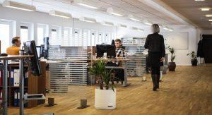 office 300x163 - office